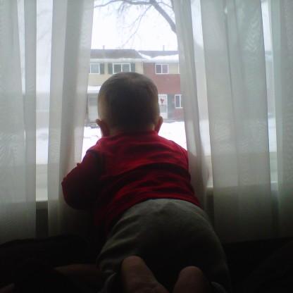 cool mind, curious gaze @ 8 months old (2010)