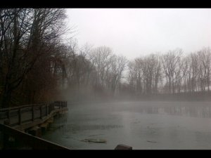 where mist + view from the dock's end 4