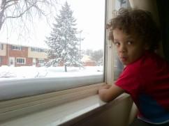 snowmageddon: shovel envy