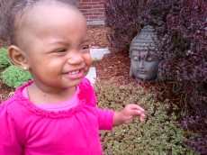 baby + the buddha